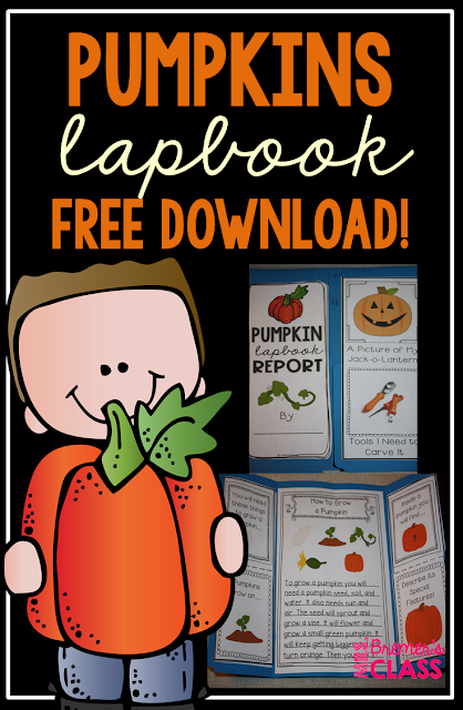 FREE Pumpkin Life Cycle Lapbook where students can show what they have learned about how a pumpkin grows.