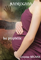 http://lesreinesdelanuit.blogspot.be/2014/09/madrugada-t3-la-prophetie-de-christine.html