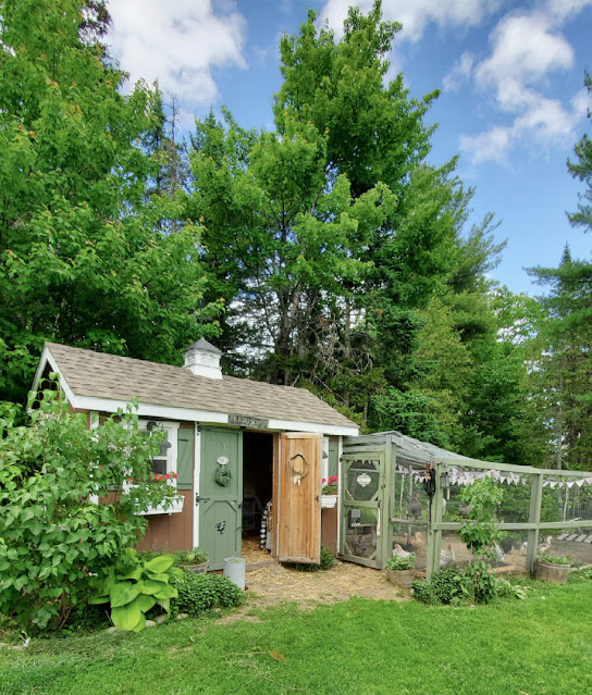 Chicken coop with landscaping