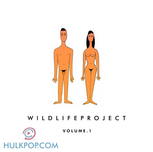 [EP] Wildlife Project