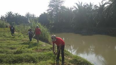 PDIP Tebingtinggi Kembali Tanam Pohon untuk Lestarikan Lingkungan