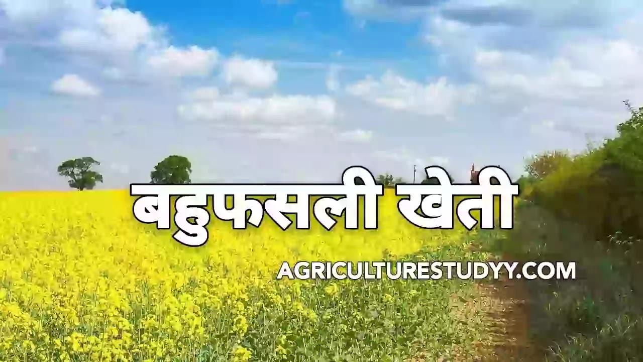 बहुफसली खेती क्या है, एवं इसके लाभ एवं विशेषताएं बताए ( What is multi-crop farming, and its benefits and characteristics )