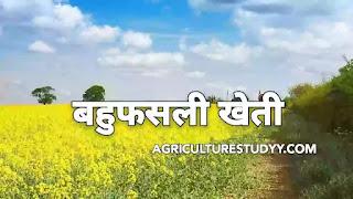बहुफसली खेती क्या है इसके लाभ एवं विशेषताएं बताए, बहुफसली खेती की परिभाषा, बहुफसली खेती के उदाहरण, बहुफसली खेती के लाभ, बहुफसली खेती की विशेषतायें