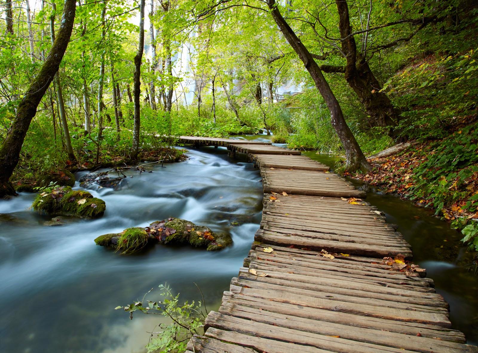 banco de im genes 12 fotos de paisajes naturales que