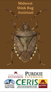 New App for MN Farmers, Consultants: Midwest Stink Bug Assistant