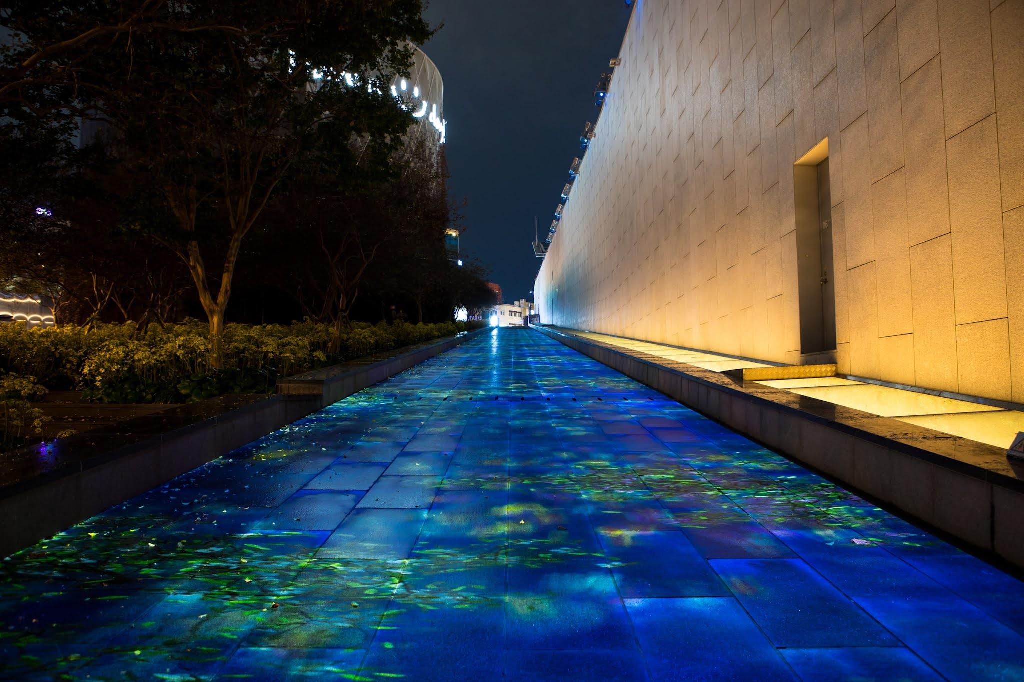 إكسبو دبي Expo Dubai يسهم في تعزيز الوعي الجماهيري وإيجاد حلول لأهم التحديات الراهنة
