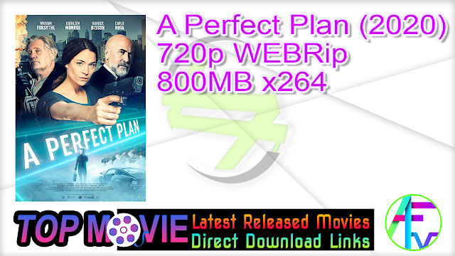 A Perfect Plan (2020) 720p WEBRip 800MB x264 Movie Online