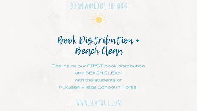 Ocean Warriors Plastic in Paradise:  Book Distribution + Beach Clean