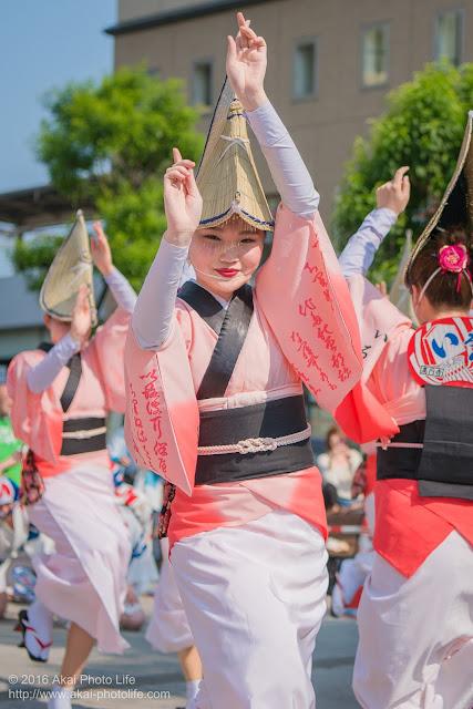 高円寺パル商店街、いろは連の阿波踊りの写真 2