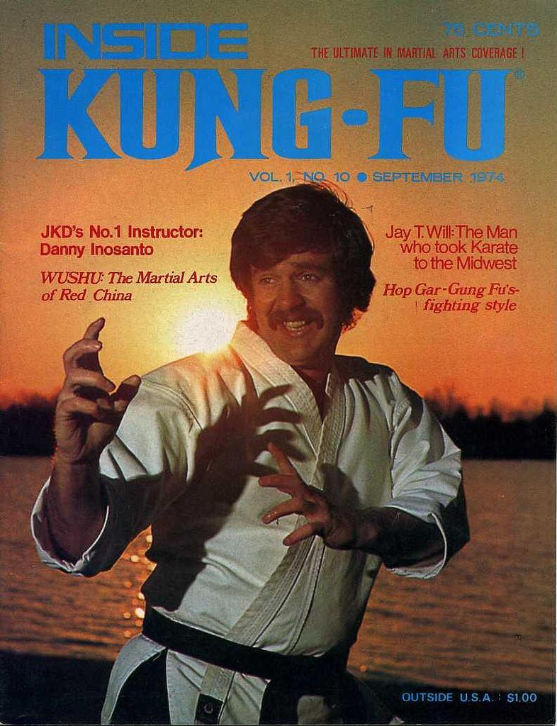 Vintage Kung Fu Fighti...