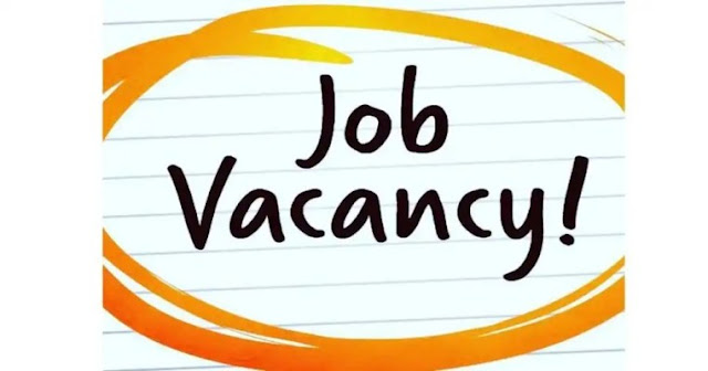 Sales Intern at ACME Brands Limited