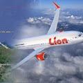Sempat Minta Putar Balik, Pesawat Lion Air Jatuh Di  Tanjung Pakis Karawang