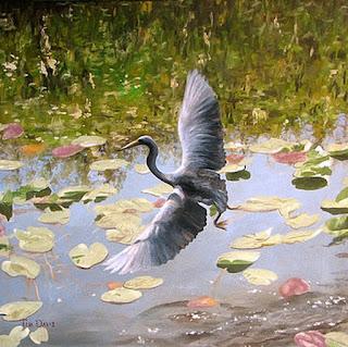 pinturas-de-naturaleza-paisajes-y-aves vistas-naturales-aves-pinturas-oleo