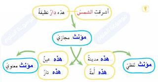 المؤنث المجازي قسمان: مؤنث لفظي ومؤنث معنوي