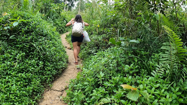 girl backpacker walking on a lovely path along nature greeneries