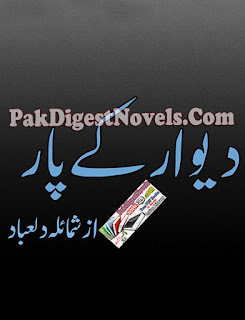 Deewar Ke Paar Novel By Shumaila Dilabad Pdf Free Download