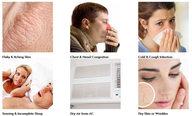 Humidifier & Air diffuser Uses, Benefits for Health, Skin & Hair