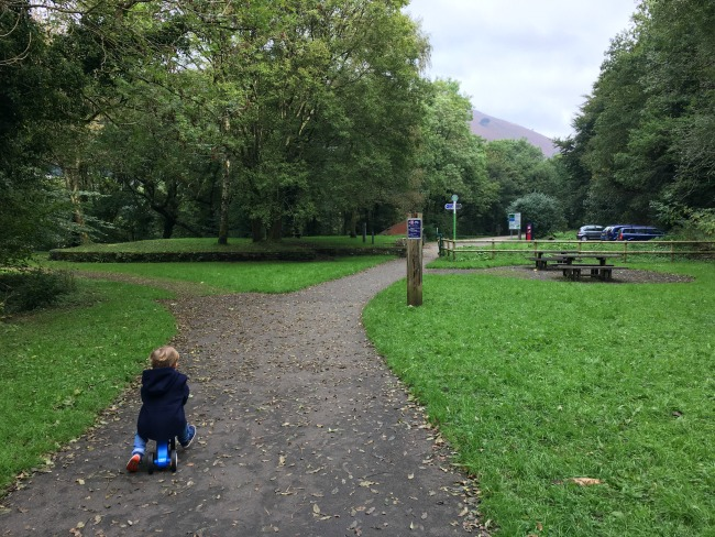 toddler-on-bike