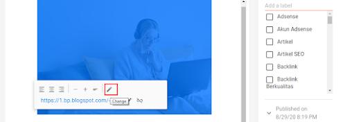 Manfaat Menggunakan ALT Text pada Gambar Untuk SEO