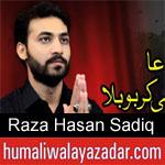 https://audionohay.blogspot.com/2019/08/raza-hasan-sadiq-nohay-2020.html