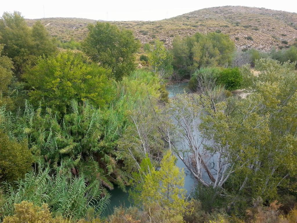 Senda De La Huertecica Sotos Y Bosque De Ribera De Ca 241 Averosa