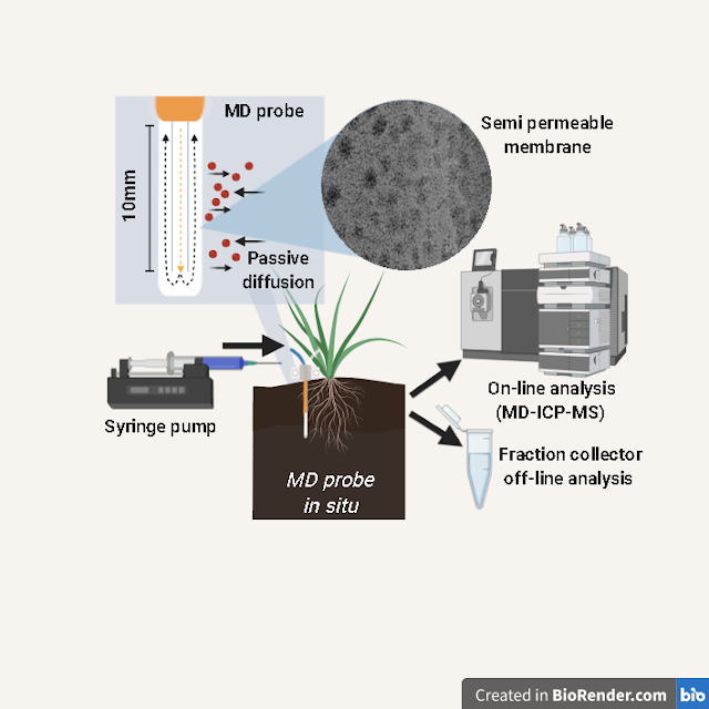 Imagine shows a graphic featuring a test tube (MD probe / passive diffusion) with close up of semi-permeable membrane, as well as the syringe pump, it's placement in the soil, the fraction collector and image of the MD-ICP-MS on-line analysis