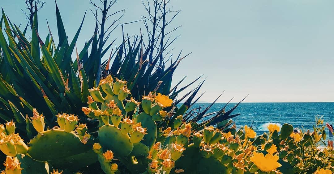 Παραλίες της Ξάνθης: 5 ονειρικά κλικ που μαγεύουν