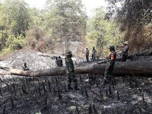 TNI-Polri di NTB Siaga Kebakaran Hutan dan Lahan