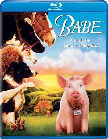 Babe 1995 Dual Audio Hindi Bluray Movie Download