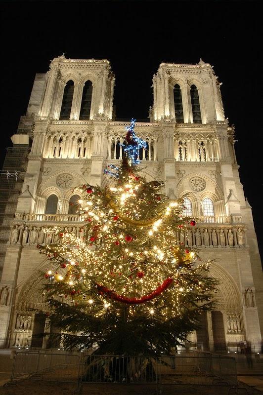 Notre Dame é o Céu sonhado nesta Terra