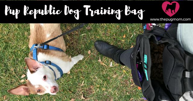 Pup Republic Dog Training Bag