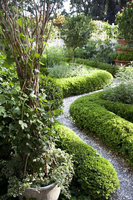 Squared off boxwood hedge ideas