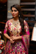 shriya saran new sizzling photos gallery-thumbnail-6
