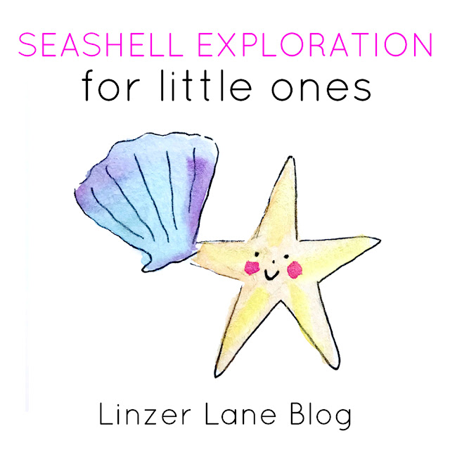 Seashell Exploration for Little Ones | Baby Playtime Activity | Linzer Lane Blog