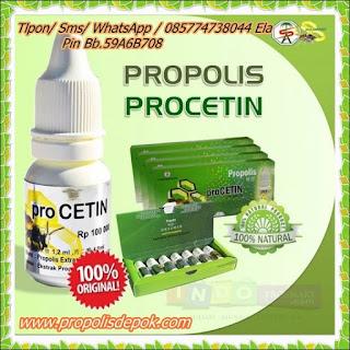 lapak propolis termurah procetin prosmart