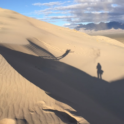 shadows mojave desert sand dunes