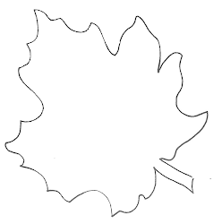 leaf template fall templates leaves printable maple stencil coloring pages outline pattern drawing stencils glenda crafts print patterns printables sheets