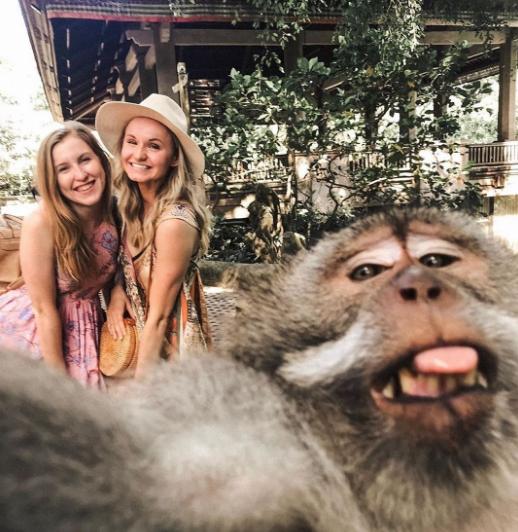 Tips Selfie Monyet di Bali