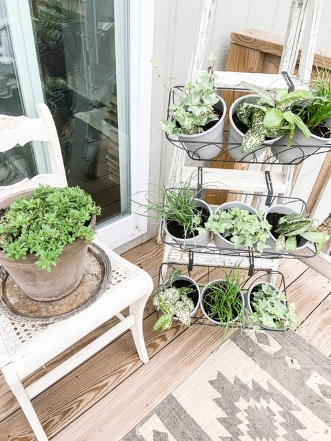 Use a ladder to hold outdoor plants