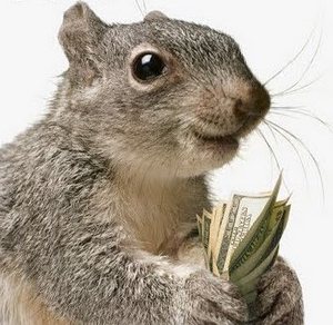 Image result for squirreled away money