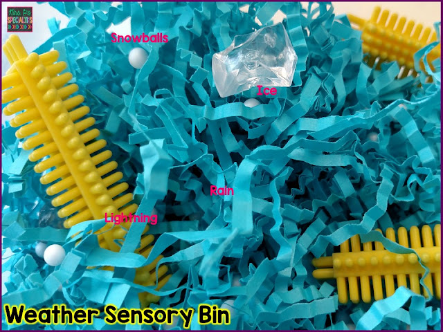 Weather sensory bin sort