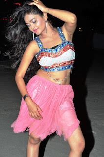 Shreya Vyas new sizzling hot pics 018.jpg