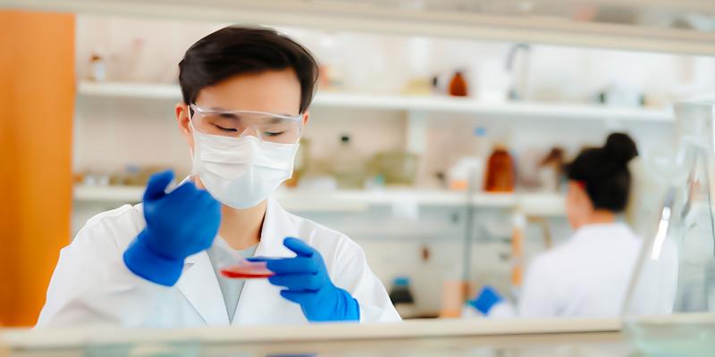 للمرة الأولى يتمكن علماء من انضاج بويضات بشرية من مراحلها المبكرة في ظروف مخبرية