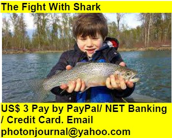 The Fight With Shark Book Store Buy Books Online Cash on Delivery Amazon Books eBay Book  Book Store Book Fair Book Exhibition Sell your Book Book Copyright Book Royalty Book ISBN Book Barcode How to Self Book