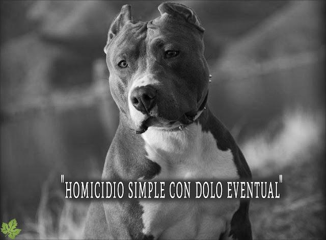 Sentencia completas caso de Santiago Veer por perro pitbull