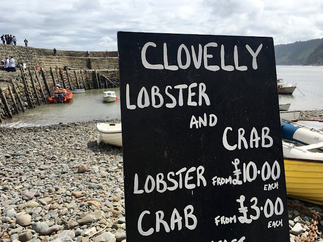 Fresh lobster and crab in Clovelly