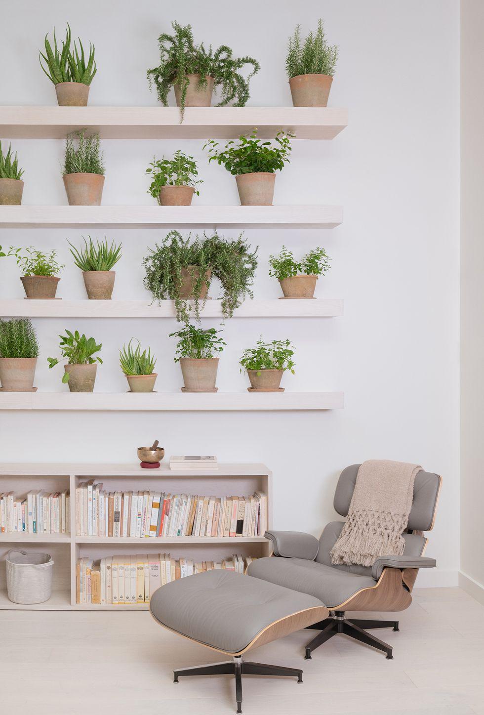 Las plantas y la zona relax en The Well, centro wellness en Manhattan