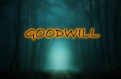 """ما هو goodwill فارق الاقناء حساب """"207"""""""