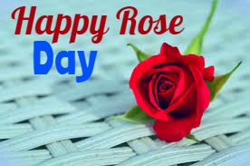 Happy Rose Day 2020 Images dp