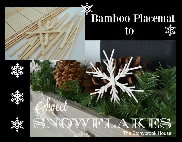 Bamboo Placemat to Snowflake